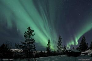 Aurora_2011-12-01_IMG_0210