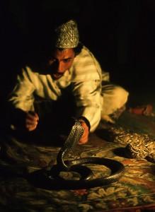 Schlangenbeschwörer in Marrakech / Marokko